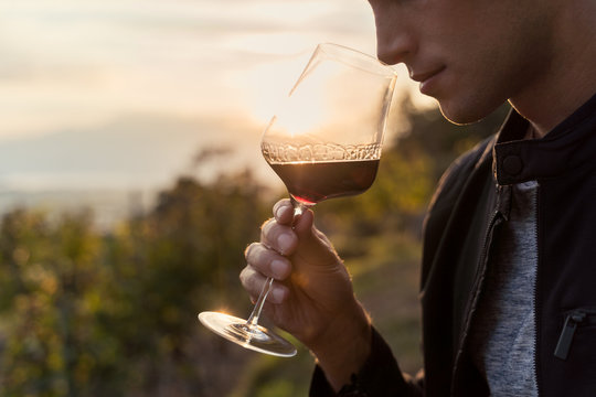 close up of a young man tasting red wine in a vineyard during sunset