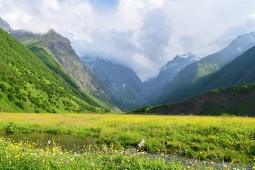 Russia, North Ossetia. Midagrabindon river in summer