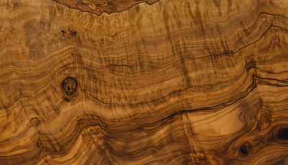texture of olive wood closeup