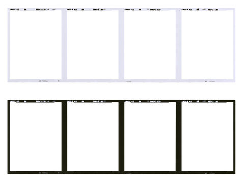 Film strip template, empty developed black and white 120 type (60mm) with 6x4.5 frames in negative and positive isolated on white background with work path.