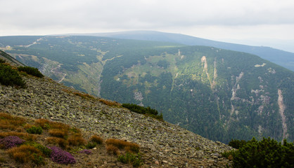 Karkonosze - Polish mountains. Mountains, trails and vegetation in the summer.