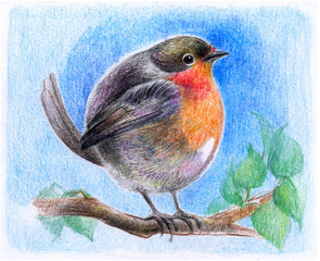 Cute bird on a branch, in the author's technique, drawing on paper with colored pencil