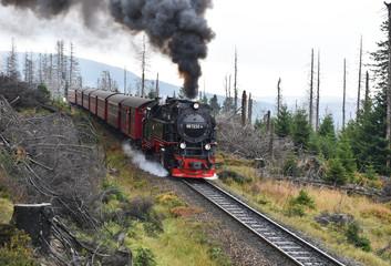 Bahnreise zum Brocken