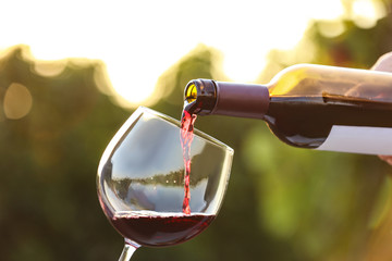 Woman pouring wine from bottle into glass outdoors, closeup Fototapete