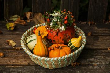 Fototapete - Basket with little pumpkins and flower decoration on a garden bench