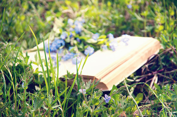 Wall Mural - Open book on green grass with flowers close-up