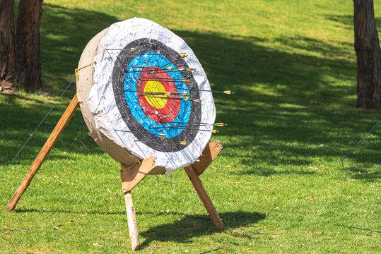 archery target with arrows in it