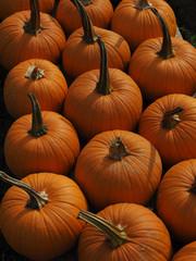 More & More Pumpkins