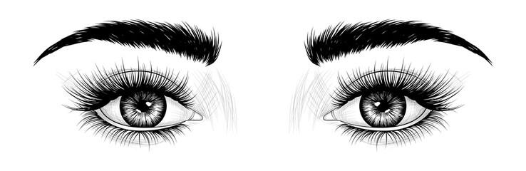Fashion illustration. Black and white hand-drawn image of eyes with eyebrows and long eyelashes. Vector EPS 10.