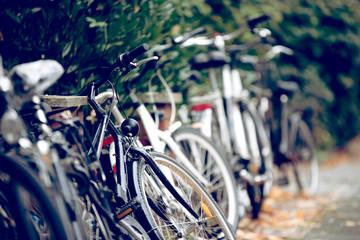 Viele Fahrräder auf einer Straße