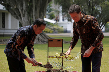 Indonesian President Joko Widodo and Dutch Prime Minister Mark Rutte pour soils as they plant a tree during a welcoming ceremony at the presidential palace in Bogor
