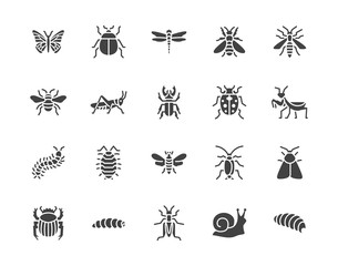 Insect flat glyph icons set. Butterfly, bug, dung beetle, grasshopper, cockroach, scarab, bee, caterpillar vector illustrations. Black signs for insects pest. Silhouette pictogram pixel perfect 64x64