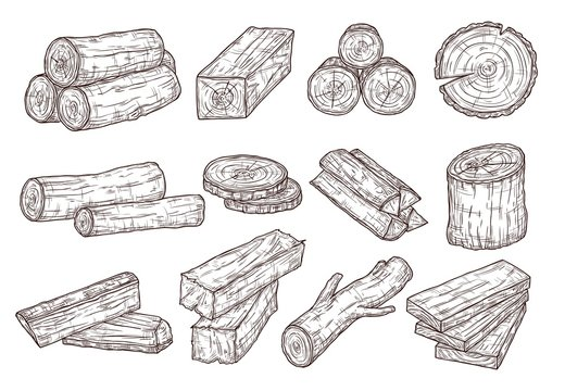 Sketch lumber. Wood logs, trunk and planks. Forestry construction materials hand drawn isolated vector set. Illustration wood timber, trunk tree cut