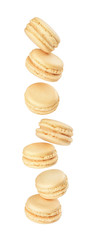 stack of macaroons fly on a white background