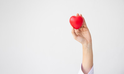 Woman doctor hands holding red heart on wide white background donate for hospital care concept. Panoramic world heart day and world health day, CSR community, foster support patient.