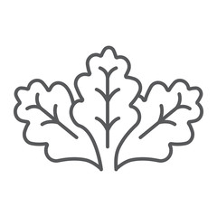 Lettuce thin line icon, vegetable and organic, salad sign, vector graphics, a linear pattern on a white background.