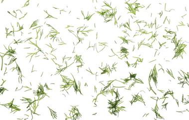 Fototapeta Fresh chopped, cut green dill isolated on white background, top view obraz