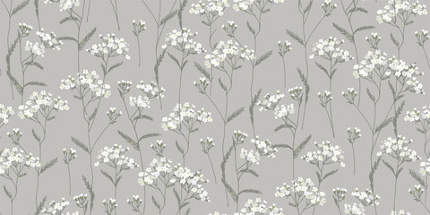 Foto op Canvas Botanisch Achillea millefolium. White, wildflowers. Medicinal plant. Wild flower. Botanical illustration.