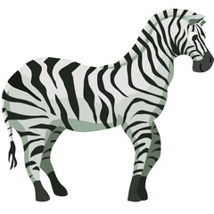 Cartoon zebra flat vector illustration