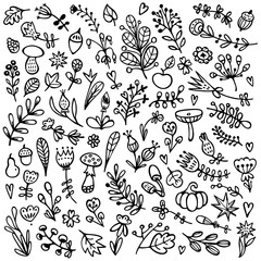 Bullet journal hand drawn vector elements for notebook, diary, and planner. Set of doodles flowers, branches, leaves, herbs, plants. .