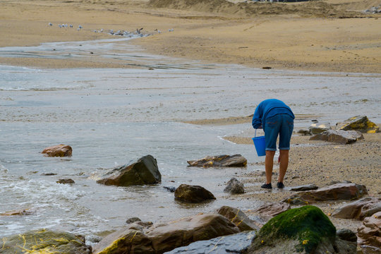 Single female person beach combing at the waters edge collecting things into a bucket