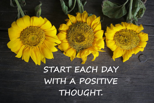 Inspirational motivational quote - Start each day with a positive thought. With yellow sun flowers on rustic wooden table background. Words of wisdom concept.