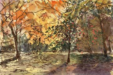 Autumn landscape. Watercolor drawing