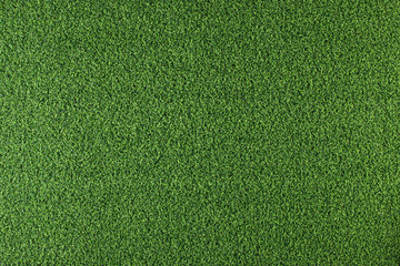 Canvas Prints Grass Texture of green grass