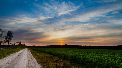 sunset over green field HDR Wall mural