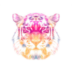 Abstract colorful tiger on white background