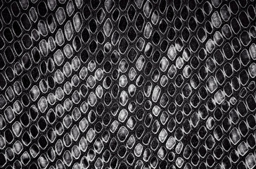 Wall Mural - Reptile skin - black and white snake skin background