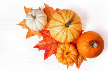 Arrangement of gourds and fall leaves on a wooden background.