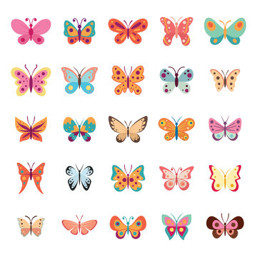 Color flat butterfly set. Butterflies vector collection spring. Vintage insects vector collection isolated on white background