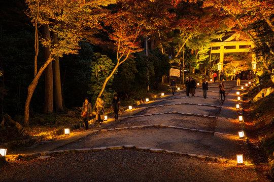 日本の秋 滋賀 日吉大社73  Autumn in Japan, Shiga Prefecture, Hiyoshitaisha #73