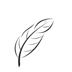 vector element feather silhouette