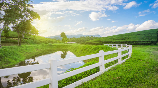 White farm fence between tea plantations mountain and pond,lagoon with blue sky.