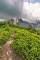 foot path uphill in to the forest. lovely summer scenery. hiking and outdoor activities concept. dark cloudy sky. composite imagery with rocky peak
