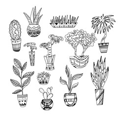 Foto auf AluDibond Boho-Stil Set of contour illustrations of home flowers with patterns. Line art plants. Vector object for postcards, coloring books and your creativity.