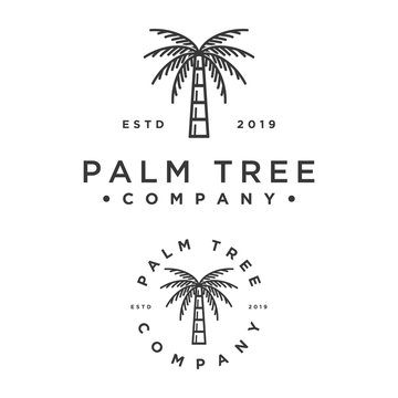 hipster style palm tree vector logo