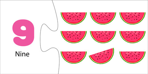 Number 9 and nine slices of watermelon. Fruit count for kids. Math for preschoolers. Educational flash card. Puzzle game