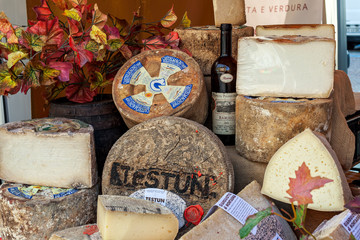 Different types of semi-hard cheese at the market.
