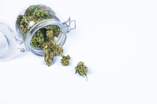 Fresh green buds or flowers of cannabis marijuana weed in opened glass jar isolated on white background. Alternative treatment. Medical cannabis. Copy space.