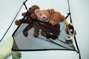 Dreierparty und Kinderfreuden - Drei Teddybären im Wäschenetz eines Campingzeltes