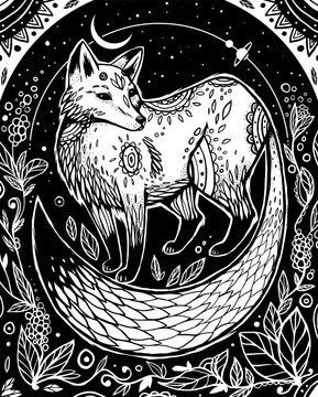 The fox stand between plants under the sky and moon and planets. Graphic illustration. Coloring book page.