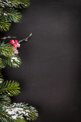 Christmas greeting card with fir tree branch
