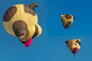 Arnsberg, North Rhine Westphalia / Germany-August 31th 2019: Hot air balloon special shape of a dog's head. 3 pictures in one...Warsteiner International Montgolfiade is the organizer...