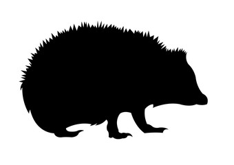 Hedgehog silhouette vector illustration isolated