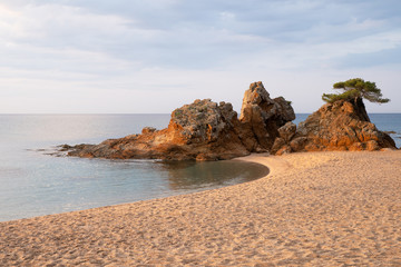 Fototapete - Tropical summer landscape with beautiful sand beach