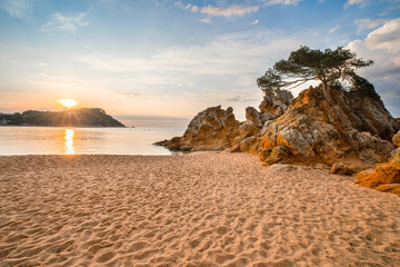 Fototapete - Tropical landscape with beach