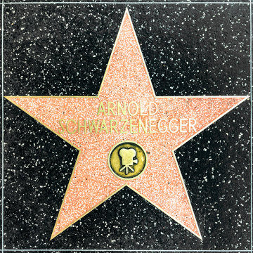 closeup of Star on the Hollywood Walk of Fame for Arnold Schwarzenegger